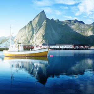Rohstoffe: Natürliches Fischöl von NORSAN