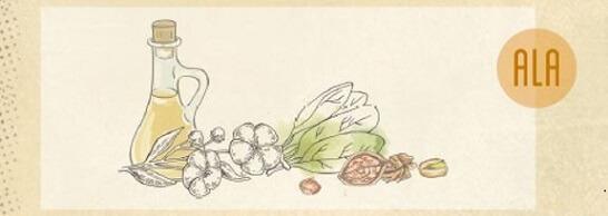 Die pflanzliche Omega-3-Fettsäure ALA ist vor allem in Leinsamen, Chiasamen und Walnüssen enthalten