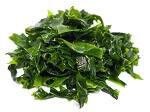 Omega-3 Lebensmittel_Algen bzw. Mikroalgensind reich an Omega-3