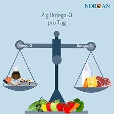 Um das Omega-6-3-Verhältnis auszugleichen, sollten 2 g Omega-3 Pro Tag aus Fisch oder Omega-3 Öl eingenommen werden